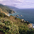 Pacific Coastline at Big Sur Print by George Oze