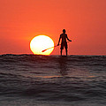 Paddle Board Sunset Poster by Nathan Miller