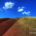Painted Hills Blue Sky 1 Print by Bob Christopher