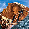Painting Half Dome Yosemite N P Poster by  Bob and Nadine Johnston