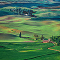 Palouse - Washington - Farms - #4 Poster by Nikolyn McDonald