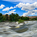 Payette River Print by Robert Bales
