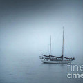 Peaceful Sailboat on a Foggy Morning from the book MY OCEAN Print by Artist and Photographer Laura Wrede