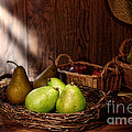 Pears at the Old Farm Market Poster by Olivier Le Queinec