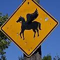 Pegasus road sign Poster by Garry Gay