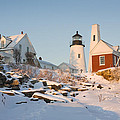 Pemaquid Point Lighthouse Winter in Maine  Poster by Keith Webber Jr