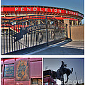 Pendleton Round-Up Poster by David Bearden