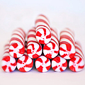 Peppermint Twist - Candy Canes Poster by Kim Hojnacki