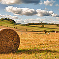 Perfect Harvest Landscape Print by Christopher and Amanda Elwell