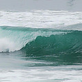 Perfect Wave Print by Donna Blackhall