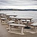 Picnic tables Print by Tom Gowanlock