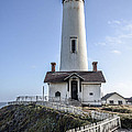 Pigeon Point Lighthouse Print by Amy Fearn