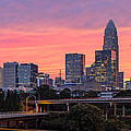 Pink Charlotte Sunset Poster by Chris Austin