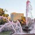 Pink Fountain for Breast Cancer Print by Terri Morris