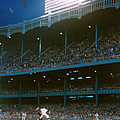 Old Yankee Stadium  Print by Retro Images Archive