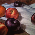 Plums and Nectarines Poster by Timothy Jones