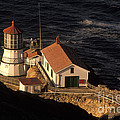 Point Reyes Lighthouse Poster by Ron Sanford
