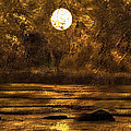 Pond of Gold Print by Paul St George
