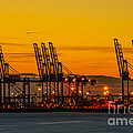 Port of Felixstowe Poster by Svetlana Sewell