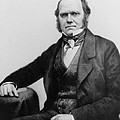 Portrait of Charles Darwin Poster by English Photographer
