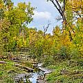 Poudre Walk-2 Print by Baywest Imaging