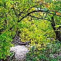 Poudre Walk Print by Baywest Imaging
