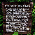 Prayer of the Woods Poster by Michelle Calkins