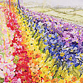 Primrose Rainbow Poster by Joan Thewsey