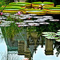 Prince Charmings Lily Pond Print by Frozen in Time Fine Art Photography