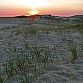 Provinceland Dunes Print by Juergen Roth
