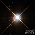 Proxima Centauri Poster by Science Source