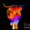 Psychedelic Bovine Poster by Pixel Chimp