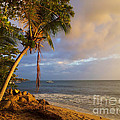 Puerto Rico Palm Lined Beach With Boat At Sunset Print by Jo Ann Tomaselli