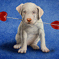 Puppy lover... Print by Will Bullas