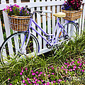 Purple Bicycle and Flowers Print by David Smith