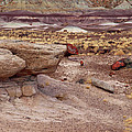 Purple Earth Print by James Peterson