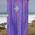 Purple Gateway to the Sea  Print by Asha Carolyn Young