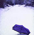 Purple Umbrella Print by Christopher and Amanda Elwell