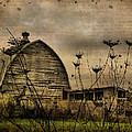 Queen Anne's View Barn Collage Print by Gothicolors Donna Snyder