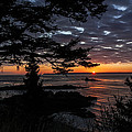Quoddy Sunrise Print by Marty Saccone