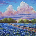 Rain For The Bluebonnets Print by David G Paul
