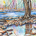 Ralph Stover Park in the Spring Poster by Patricia Allingham Carlson
