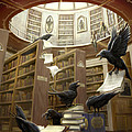 Ravens in the Library Print by Rob Carlos