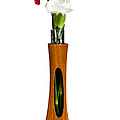 Red and white spray carnations in teak vase Poster by Steve Heap