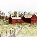 Red Barn Print by Marcia Colelli
