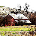Red Barn Print by Steve McKinzie