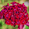 Red Carnations Poster by Omaste Witkowski