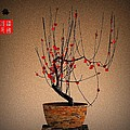 red plum blossoms Poster by GuoJun Pan