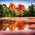 Red Rock State Park - Cathedral Rock Print by  Bob and Nadine Johnston