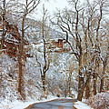 Red Rock Winter Road Portrait Print by James BO  Insogna